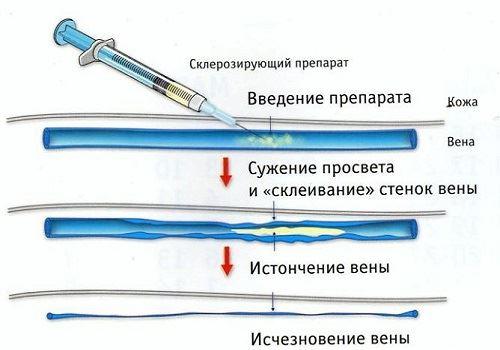Картинка 9