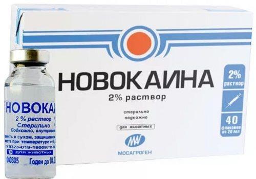 2% раствор Новокаина